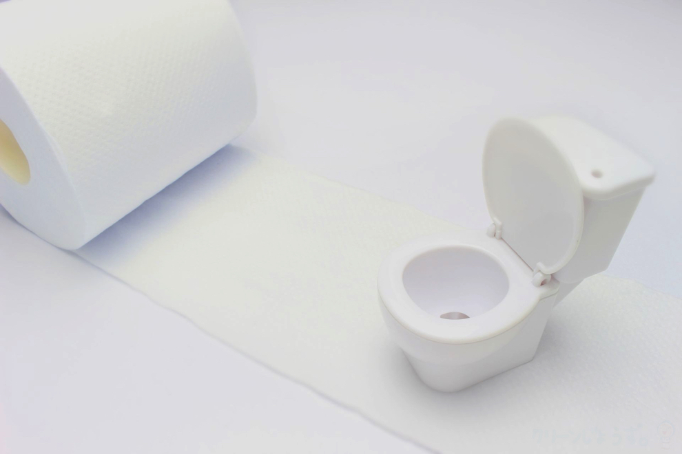 toilet_info